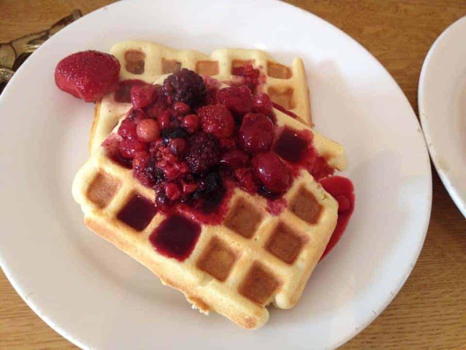 Gluten free, low carb, paleo coconut flour waffles