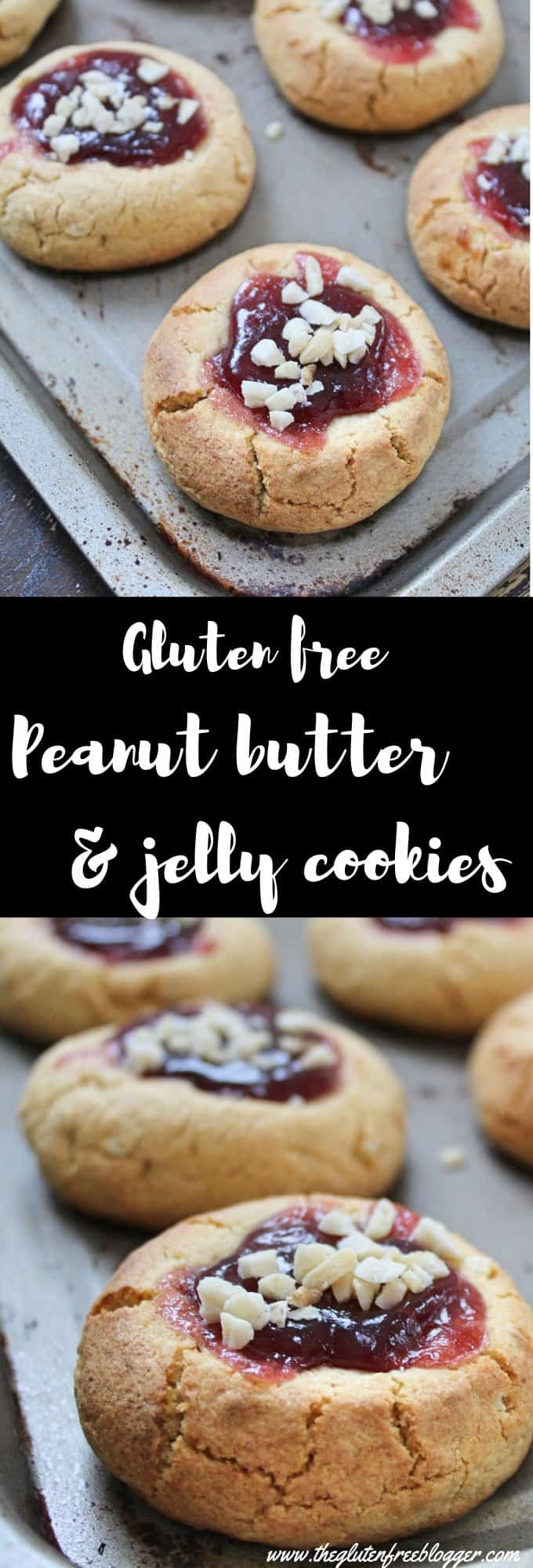 gluten free peanut butter and jelly cookies recipe - thumbprint cookies (1)
